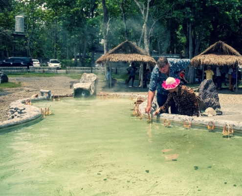 Cooking eggs at San Kamphaeng Hot Springs
